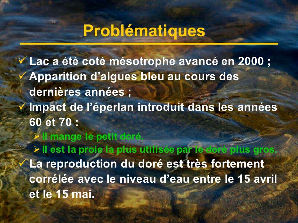 Problématiques Lac a été coté mésotrophe avancé en 2000 ; Apparition dalgues bleu au cours des dernières années ; Impact de léperlan introduit dans les années 60 et 70 : Il mange le petit doré.