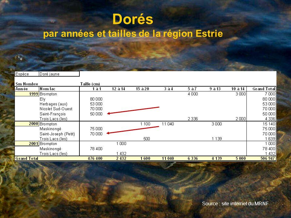Dorés par années et tailles de la région Estrie Source : site internet du MRNF