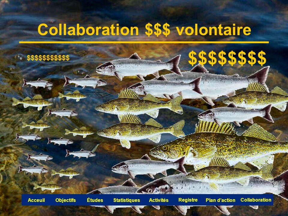 Collaboration $$$ volontaire $$$$$$$$$$$ $$$$$$$$ Collaboration Objectifs Registre ÉtudesAcceuil Collaboration ActivitésStatistiquesPlan daction