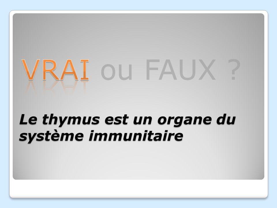 Dans quel organe les cellules du système immunitaire naissent- elles ? Le petit intestin Les glandes surrénales Le pancréas Moelle épinière Moelle oss