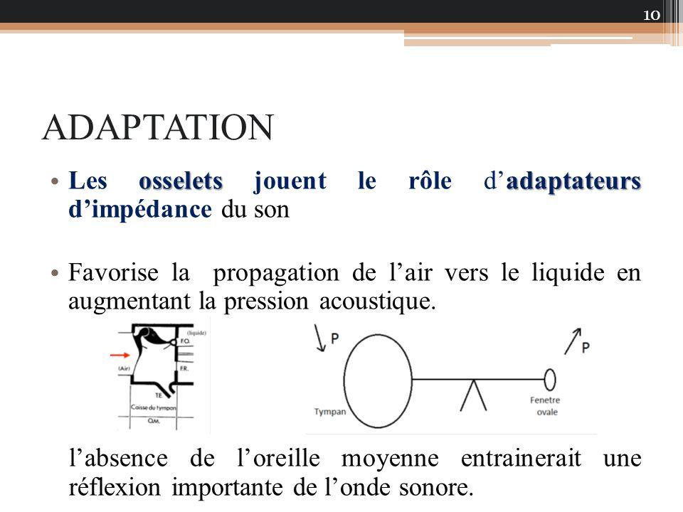 ADAPTATION osseletsadaptateurs Les osselets jouent le rôle dadaptateurs dimpédance du son Favorise la propagation de lair vers le liquide en augmentan