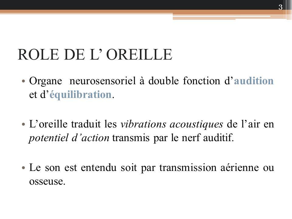 ROLE DE L OREILLE Organe neurosensoriel à double fonction daudition et déquilibration. Loreille traduit les vibrations acoustiques de lair en potentie