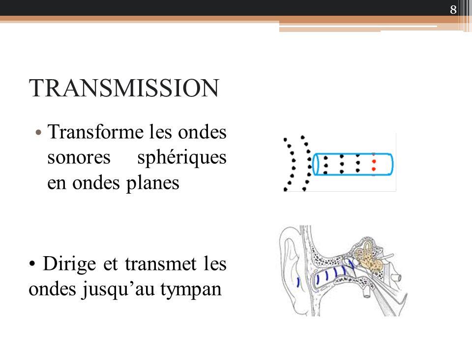 TRANSMISSION Transforme les ondes sonores sphériques en ondes planes Dirige et transmet les ondes jusquau tympan 8