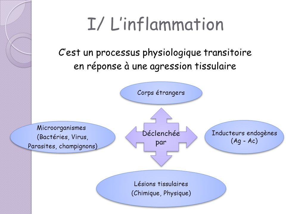 I/ Linflammation Linflammation associe: « rougeur, chaleur, douleur et œdème » - Dans quelques situations et maladies, la réponse inflammatoire peut être exagérée et prolongée Arthrite rhumatoïde Allergies Asthme Athérosclérose