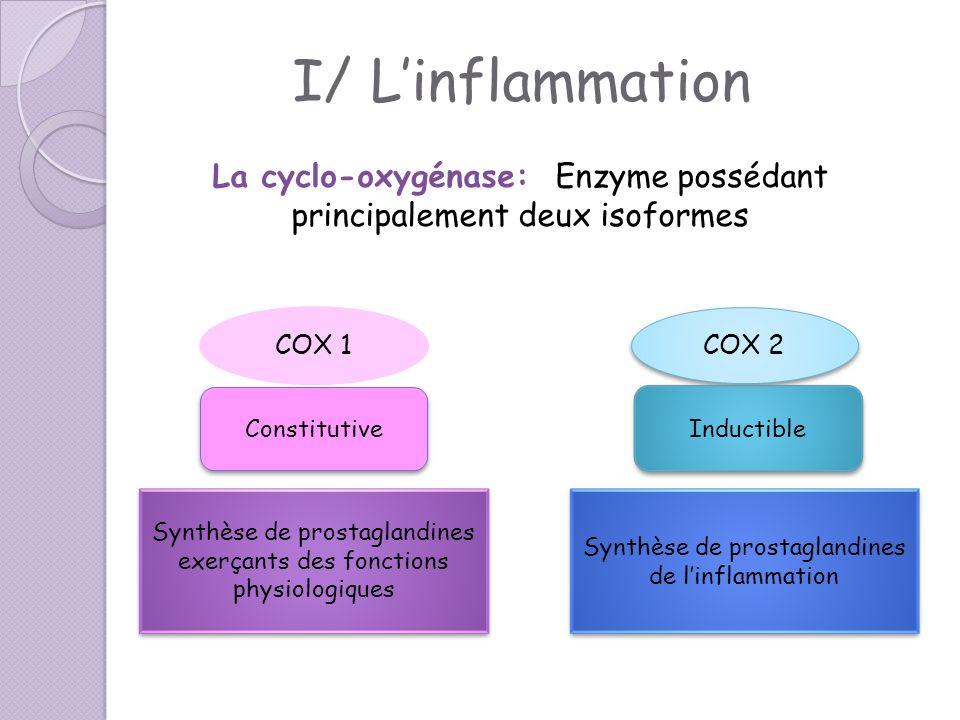 La cyclo-oxygénase: Enzyme possédant principalement deux isoformes COX 1 COX 2 Constitutive Inductible Synthèse de prostaglandines exerçants des fonct