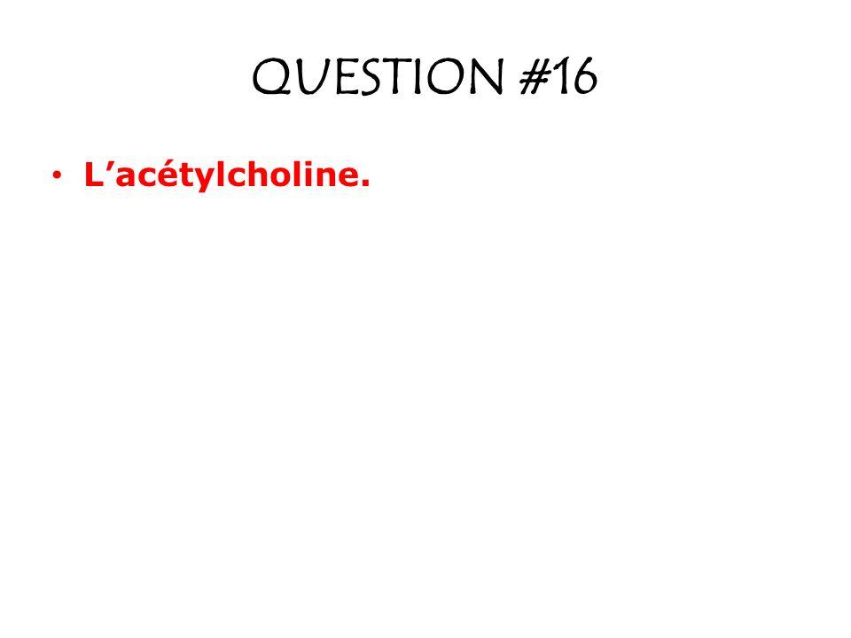 QUESTION #16 Lacétylcholine.