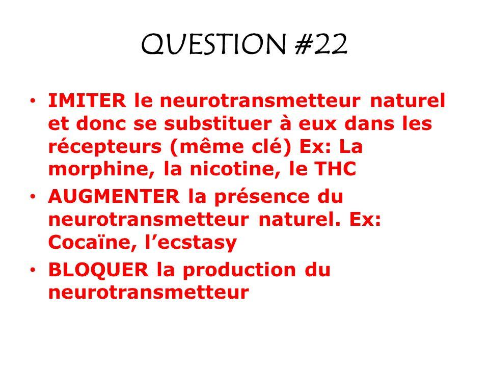 QUESTION #22 IMITER le neurotransmetteur naturel et donc se substituer à eux dans les récepteurs (même clé) Ex: La morphine, la nicotine, le THC AUGME