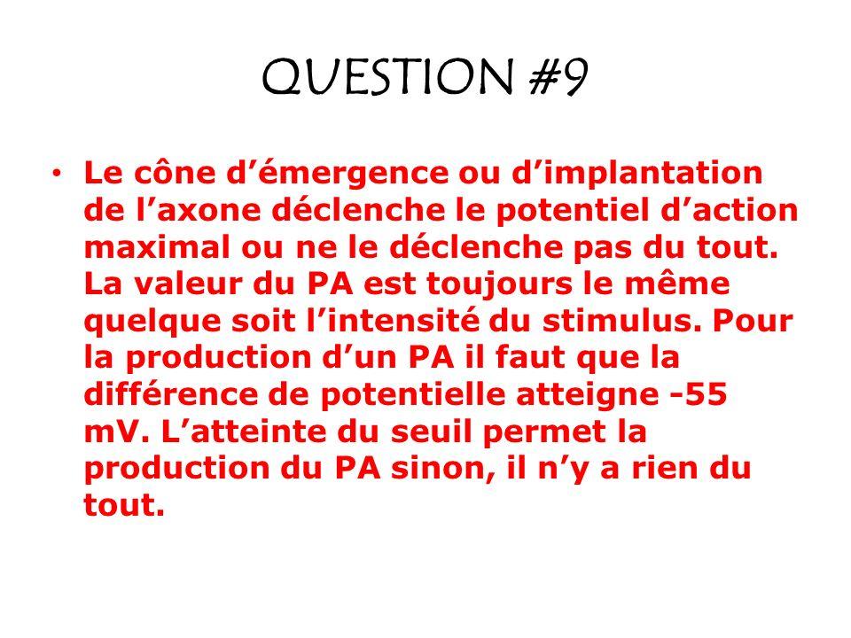 QUESTION #9 Le cône démergence ou dimplantation de laxone déclenche le potentiel daction maximal ou ne le déclenche pas du tout. La valeur du PA est t