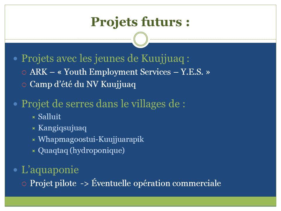 Projets futurs : Projets avec les jeunes de Kuujjuaq : ARK – « Youth Employment Services – Y.E.S. » Camp dété du NV Kuujjuaq Projet de serres dans le