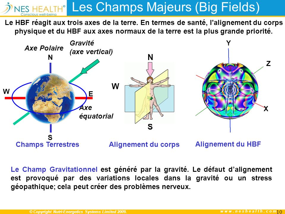 © Copyright Nutri-Energetics Systems Limited 2009. www.neshealth.com Les Champs Majeurs (Big Fields) Gravité (axe vertical) Axe Polaire N S W Le HBF r