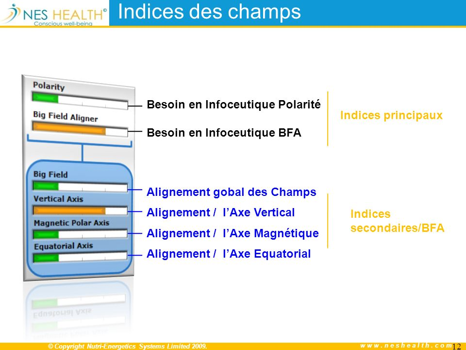 © Copyright Nutri-Energetics Systems Limited 2009. www.neshealth.com 12 Besoin en Infoceutique Polarité Besoin en Infoceutique BFA Indices des champs