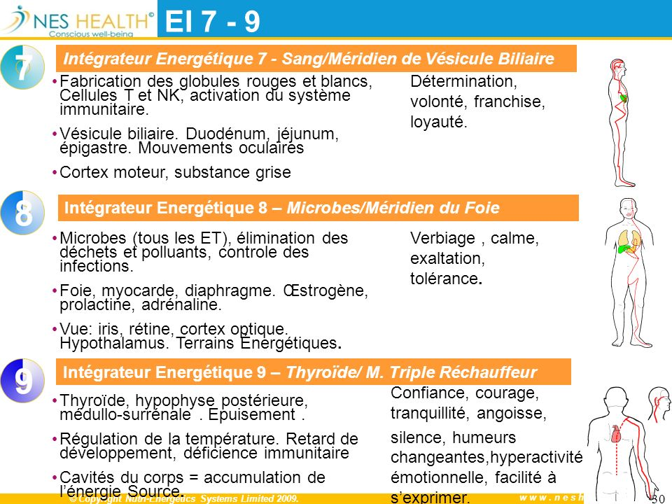 © Copyright Nutri-Energetics Systems Limited 2009.