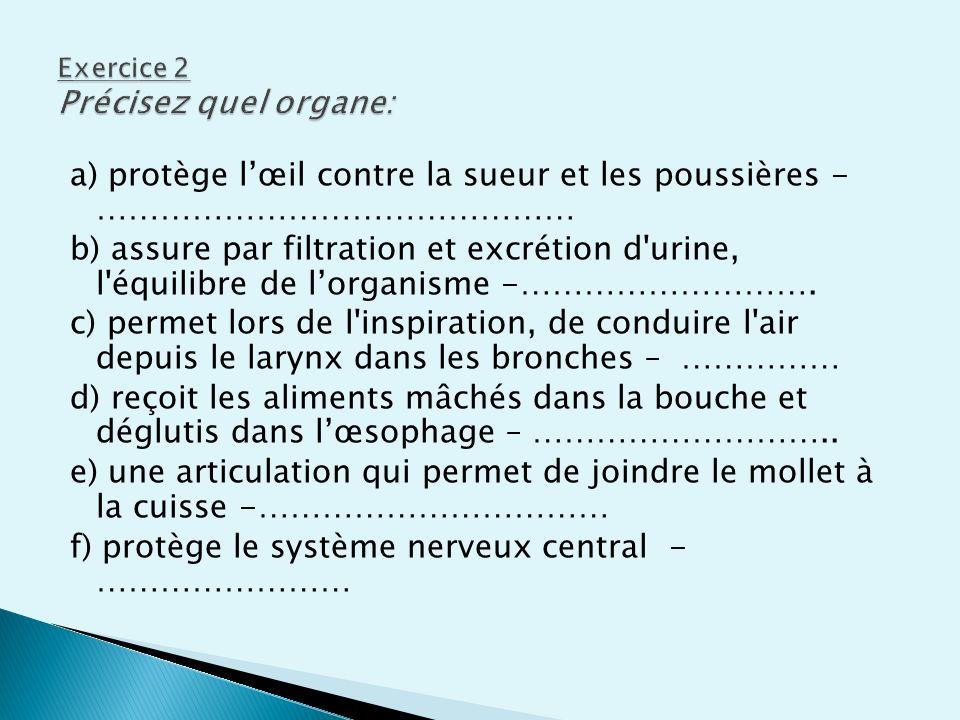 a) protège lœil contre la sueur et les poussières - ……………………………………… b) assure par filtration et excrétion d'urine, l'équilibre de lorganisme -……………………