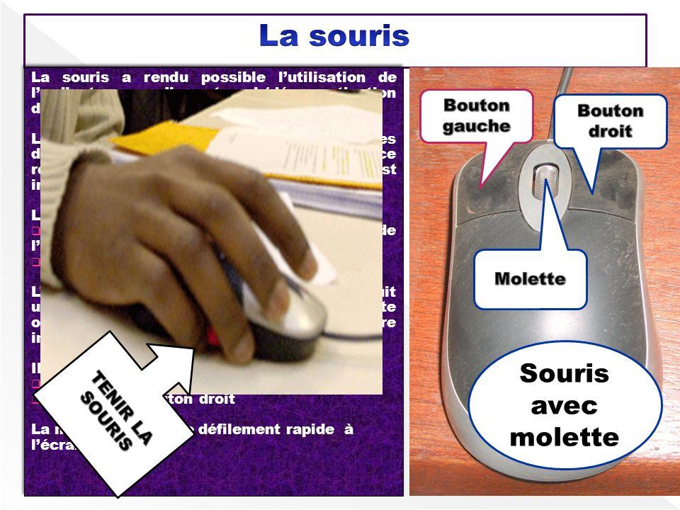 La souris a rendu possible lutilisation de lordinateur par nimporte qui (démocratisation de lordinateur) Les déplacements de la souris gèrent les dépl