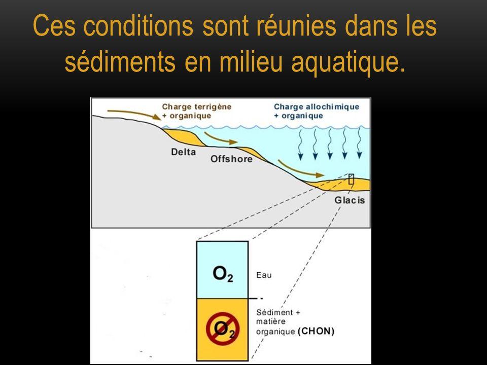 Ces conditions sont réunies dans les sédiments en milieu aquatique.