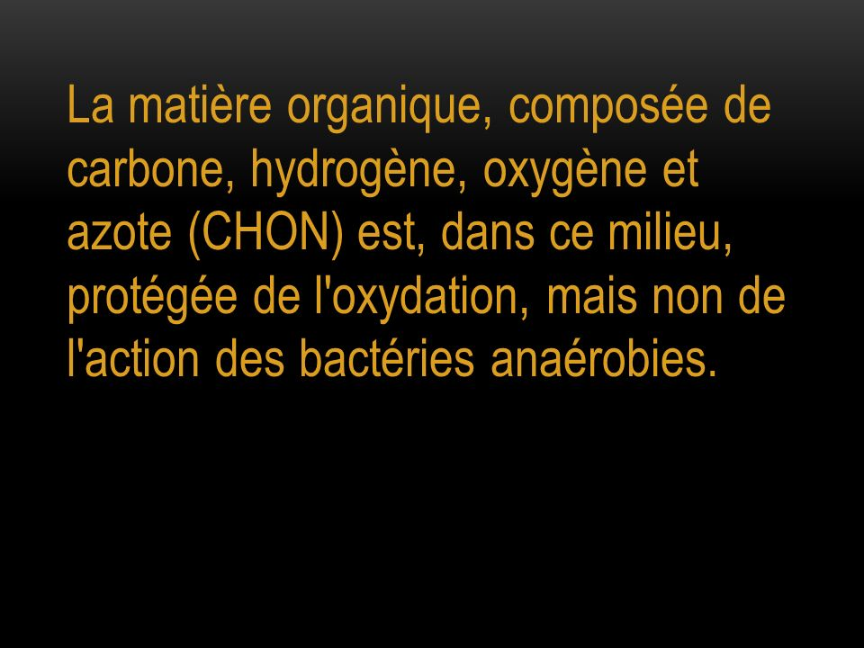 La matière organique, composée de carbone, hydrogène, oxygène et azote (CHON) est, dans ce milieu, protégée de l'oxydation, mais non de l'action des b