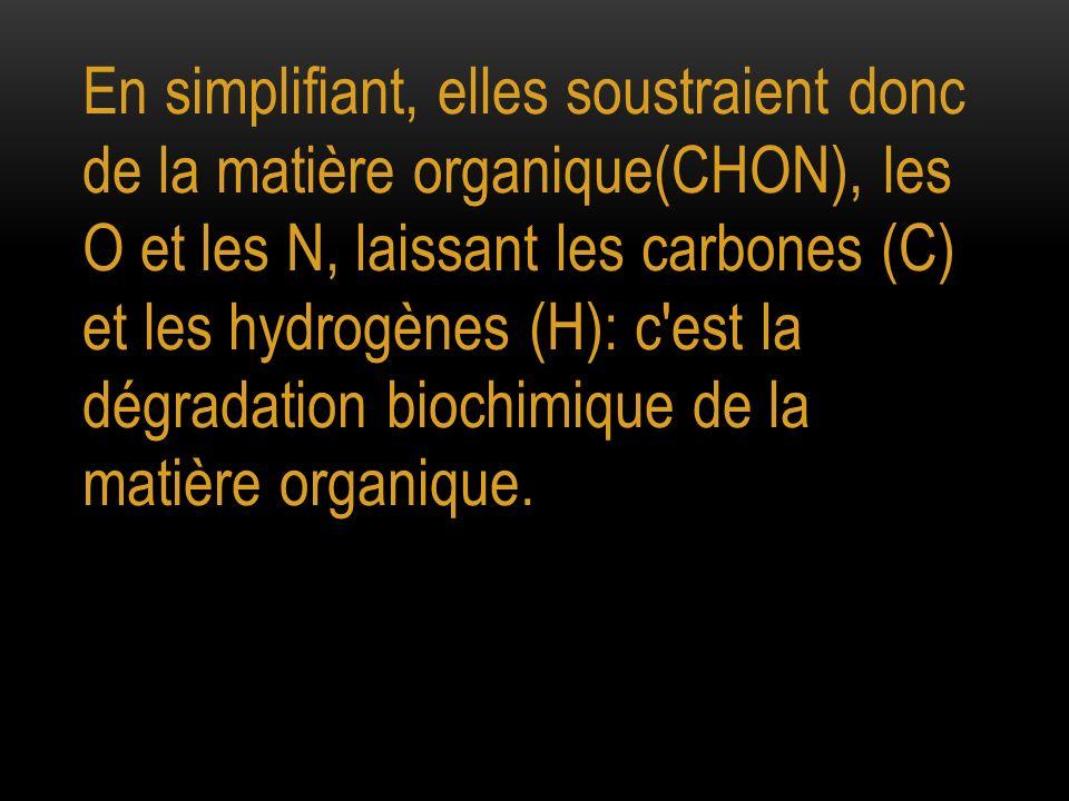 En simplifiant, elles soustraient donc de la matière organique(CHON), les O et les N, laissant les carbones (C) et les hydrogènes (H): c'est la dégrad