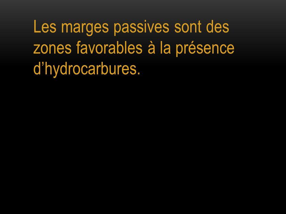 Les marges passives sont des zones favorables à la présence dhydrocarbures.