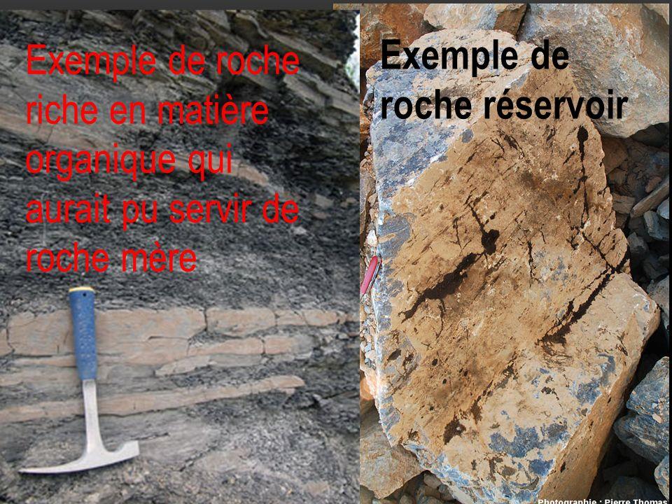 Exemple de roche riche en matière organique qui aurait pu servir de roche mère Exemple de roche réservoir