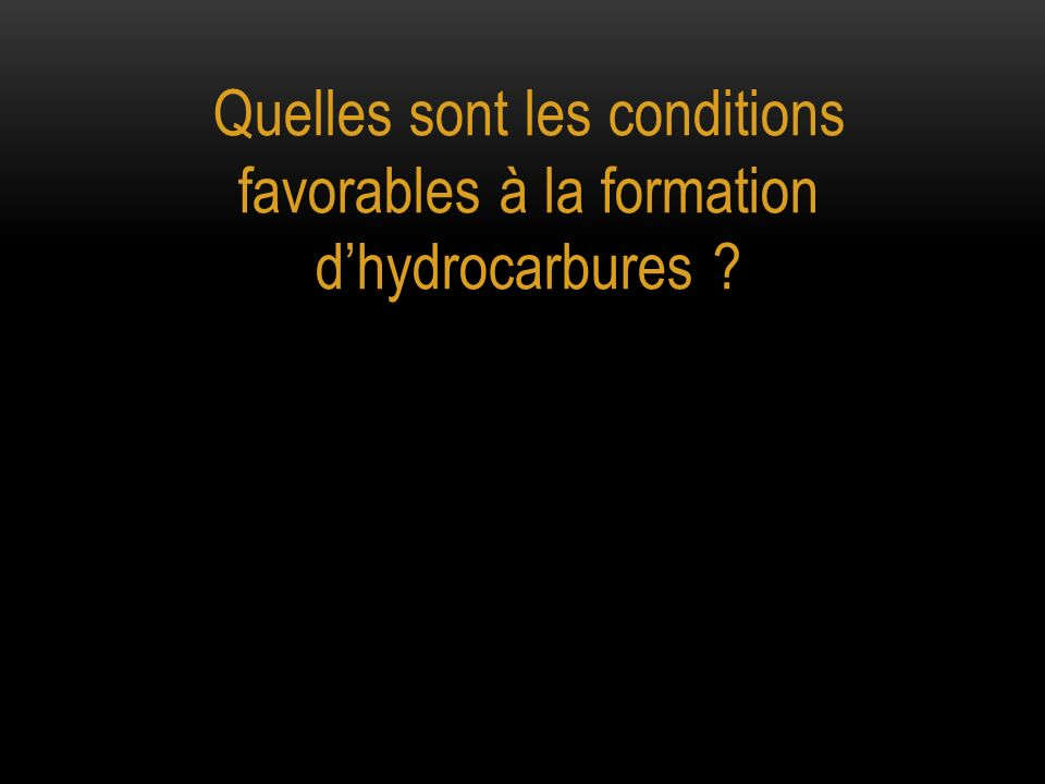 Quelles sont les conditions favorables à la formation dhydrocarbures ?