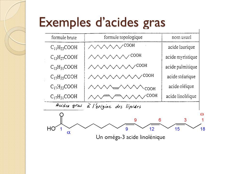 Exemples dacides gras Un oméga-3 acide linolénique