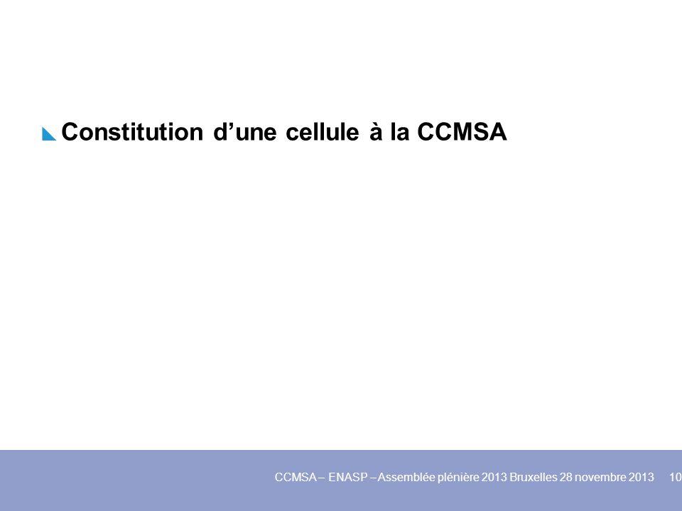 Constitution dune cellule à la CCMSA CCMSA – ENASP – Assemblée plénière 2013 Bruxelles 28 novembre 2013 10