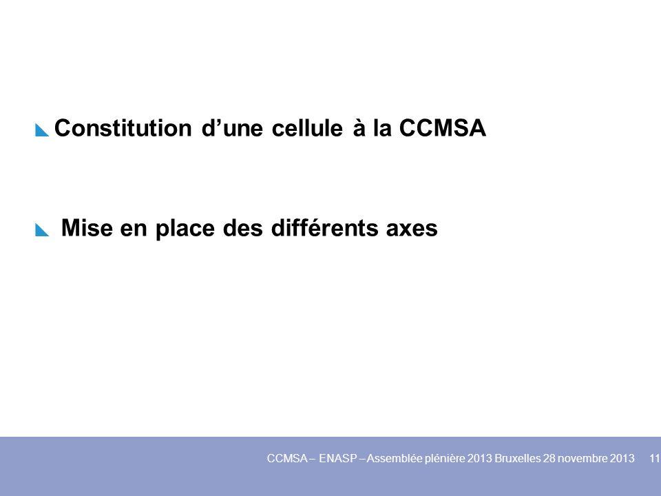 Constitution dune cellule à la CCMSA Mise en place des différents axes CCMSA – ENASP – Assemblée plénière 2013 Bruxelles 28 novembre 2013 11