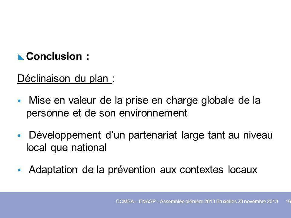 Conclusion : Déclinaison du plan : Mise en valeur de la prise en charge globale de la personne et de son environnement Développement dun partenariat l