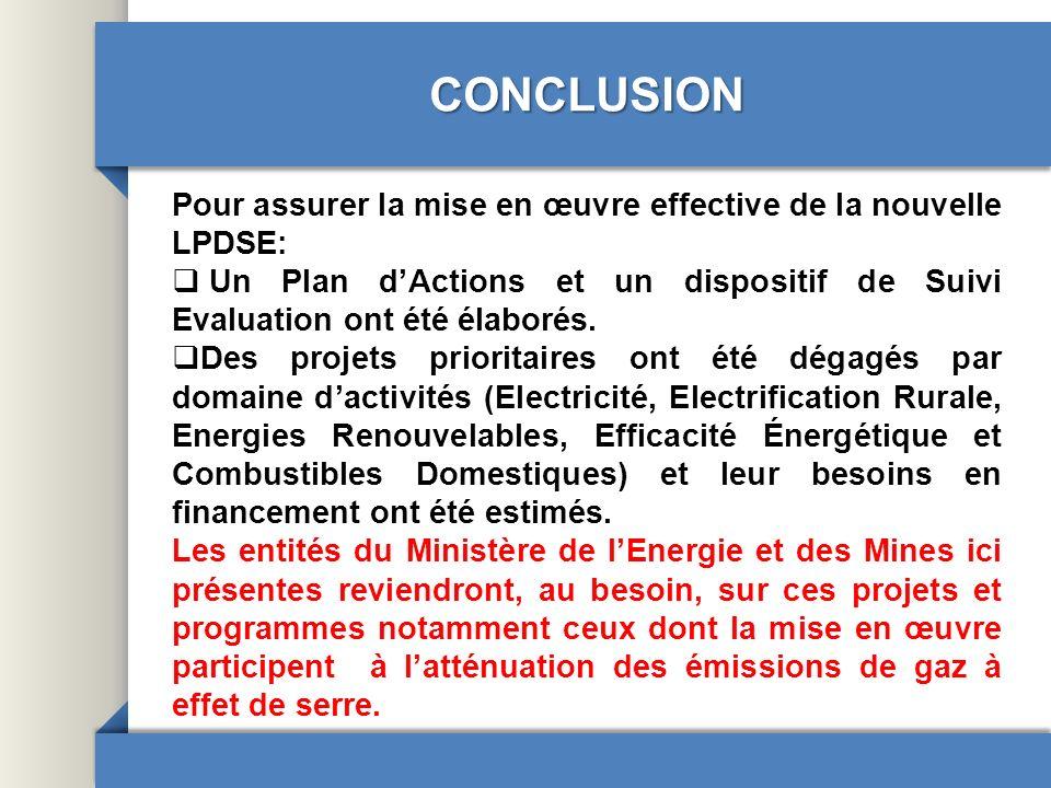 CONCLUSION Pour assurer la mise en œuvre effective de la nouvelle LPDSE: Un Plan dActions et un dispositif de Suivi Evaluation ont été élaborés. Des p