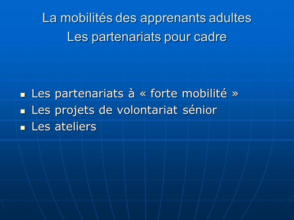 La mobilités des apprenants adultes Les partenariats pour cadre Les partenariats à « forte mobilité » Les partenariats à « forte mobilité » Les projets de volontariat sénior Les projets de volontariat sénior Les ateliers Les ateliers