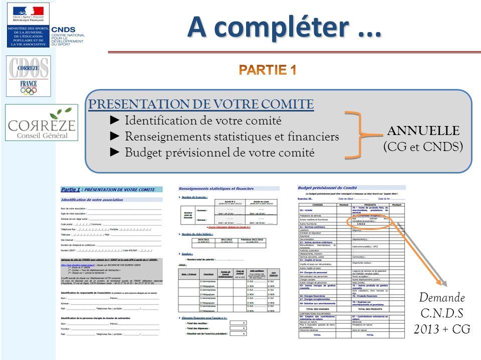 PRESENTATION DE VOTRE COMITE Identification de votre comité Renseignements statistiques et financiers Budget prévisionnel de votre comité ANNUELLE (CG