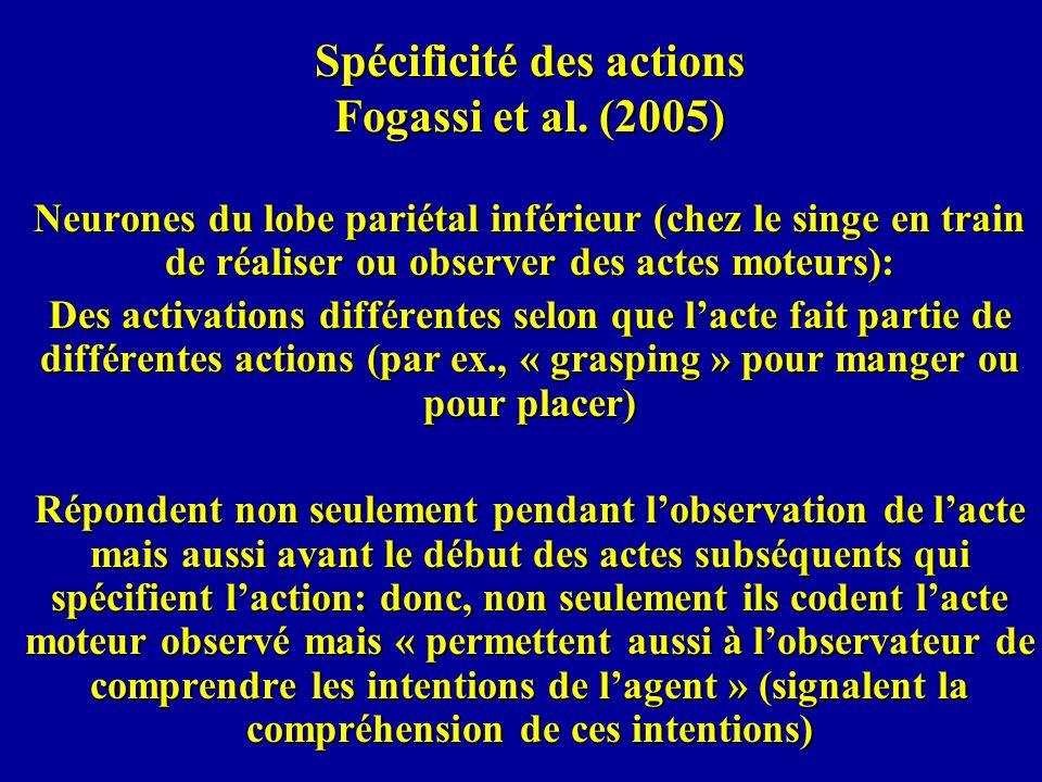 Spécificité des actions Fogassi et al. (2005) Neurones du lobe pariétal inférieur (chez le singe en train de réaliser ou observer des actes moteurs):