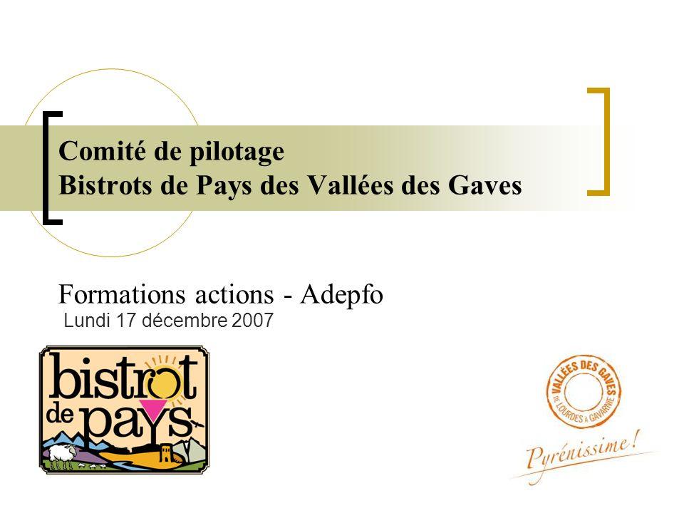 Comité de pilotage Bistrots de Pays des Vallées des Gaves Formations actions - Adepfo Lundi 17 décembre 2007