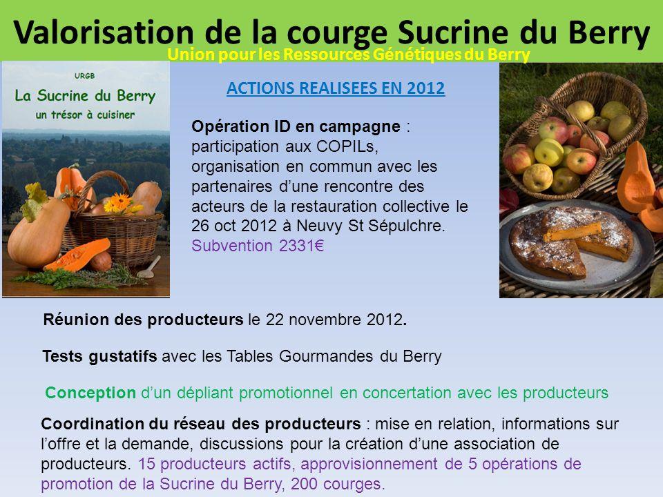 Valorisation de la courge Sucrine du Berry ACTIONS REALISEES EN 2012 Opération ID en campagne : participation aux COPILs, organisation en commun avec les partenaires dune rencontre des acteurs de la restauration collective le 26 oct 2012 à Neuvy St Sépulchre.