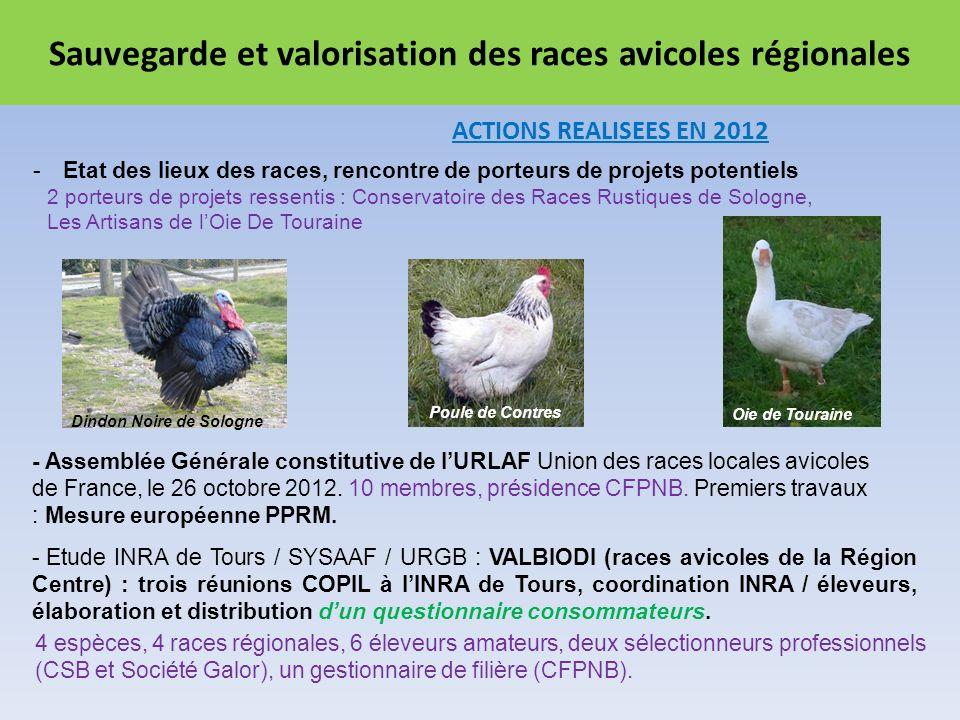 Sauvegarde et valorisation des races avicoles régionales ACTIONS REALISEES EN 2012 - Assemblée Générale constitutive de lURLAF Union des races locales avicoles de France, le 26 octobre 2012.