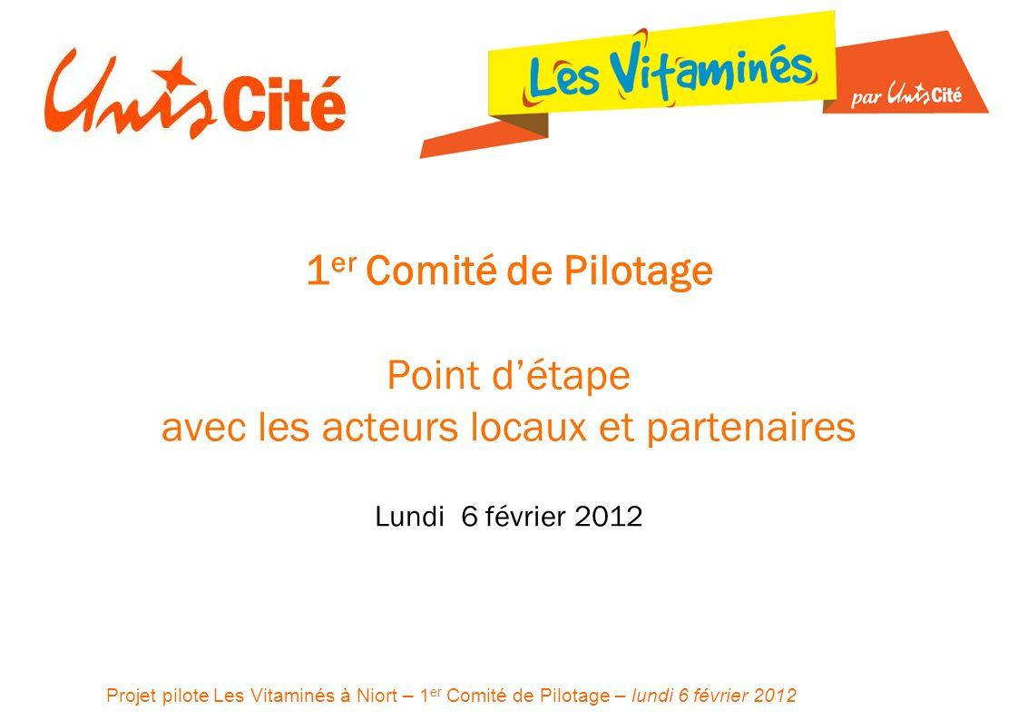 Projet pilote Les Vitaminés à Niort – 1 er Comité de Pilotage – lundi 6 février 2012 1 er Comité de Pilotage Point détape avec les acteurs locaux et partenaires Lundi 6 février 2012