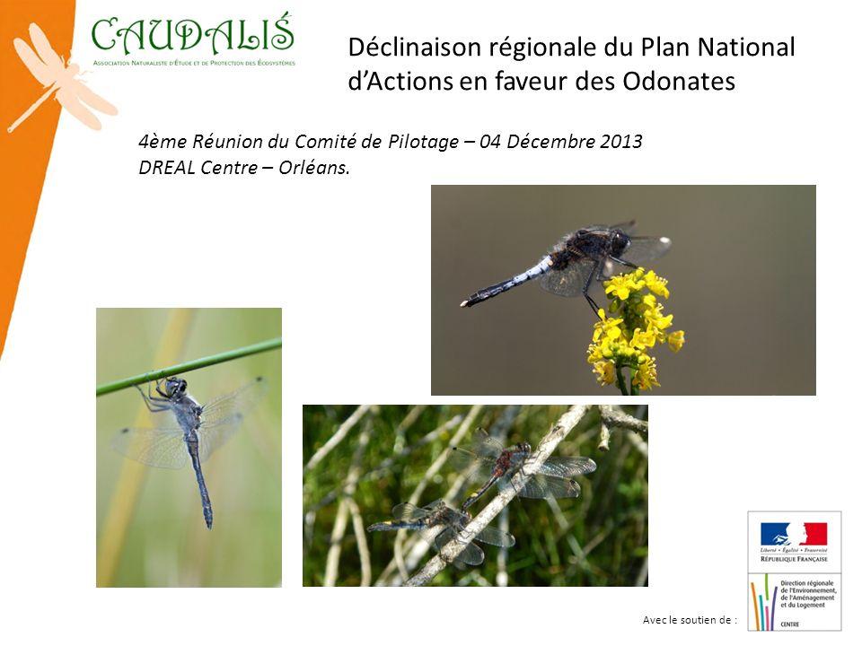 4ème Réunion du Comité de Pilotage – 04 Décembre 2013 DREAL Centre – Orléans. Déclinaison régionale du Plan National dActions en faveur des Odonates A