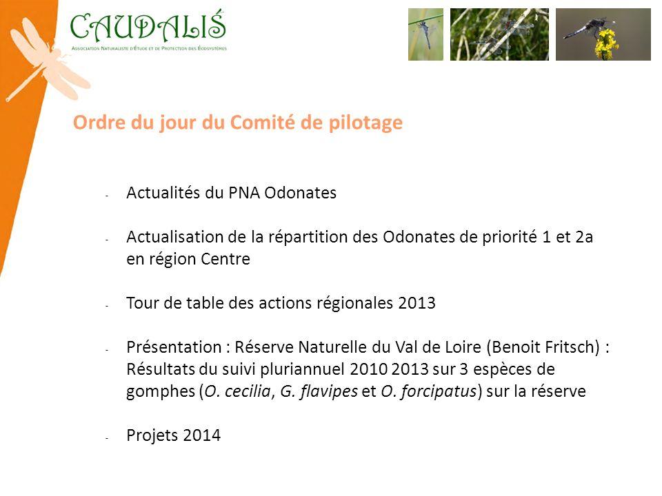 Actualités du PNA Odonates Réunion du COPIL PNA : 16 janvier 2013 État davancement des PRA en France : 11 déclinaisons validées Publication dune plaquette « agir pour les odonates » (OPIE) Programme STELI : http://odonates.pnaopie.fr/steli/ Bibliographie en ligne : http://odonates.pnaopie.fr/ressources/bibliographie/http://odonates.pnaopie.fr/ressources/bibliographie/ Actions inter-régionales : - Suivis des Gomphidés ligériens (réunion Orléans semaine du 13 ou 20 janvier) http://www.doodle.com/up973w56q2c7xcby - Structure des populations de Leucorrhinia caudalis (attente DREAL NPDC/OPIE) A proximité : - Inventaire Coenagrion ornatum en Bourgogne