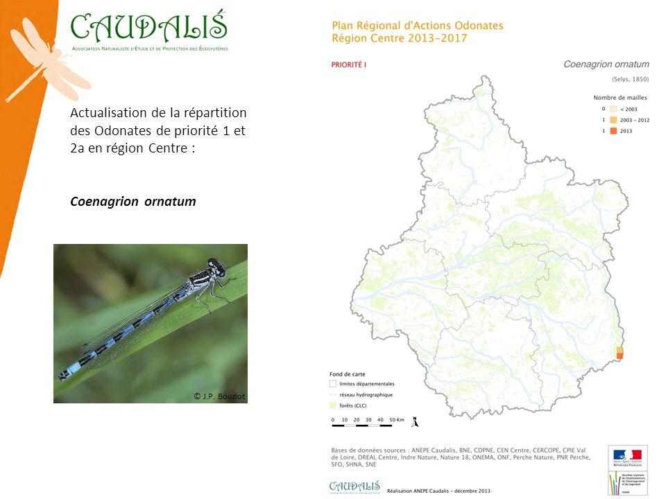 Actualisation de la répartition des Odonates de priorité 1 et 2a en région Centre : Coenagrion ornatum © J.P. Boudot
