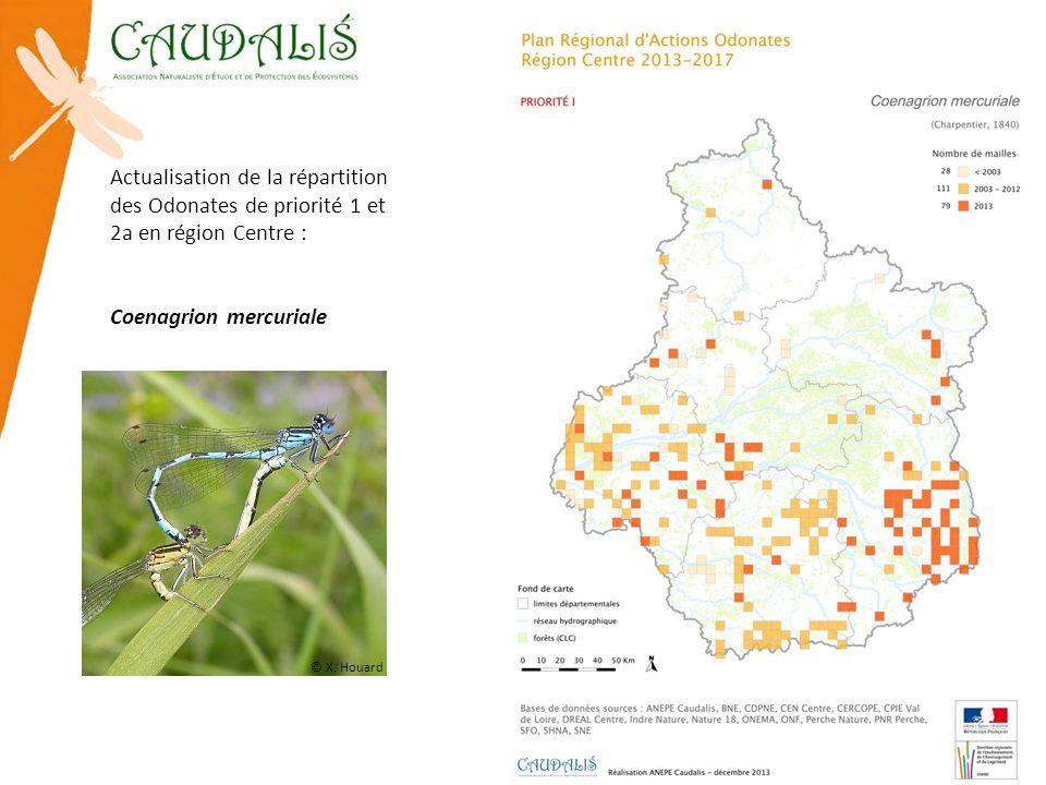 Actualisation de la répartition des Odonates de priorité 1 et 2a en région Centre : Coenagrion mercuriale © X. Houard