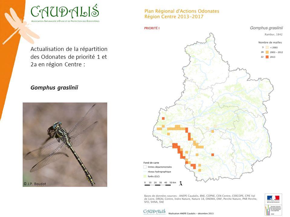 Actualisation de la répartition des Odonates de priorité 1 et 2a en région Centre : Gomphus graslinii © J.P. Boudot