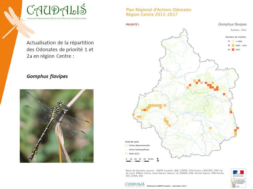Actualisation de la répartition des Odonates de priorité 1 et 2a en région Centre : Gomphus flavipes © J.P. Boudot