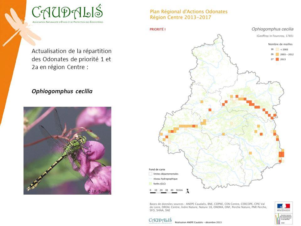 Actualisation de la répartition des Odonates de priorité 1 et 2a en région Centre : Ophiogomphus cecilia © J.P. Boudot