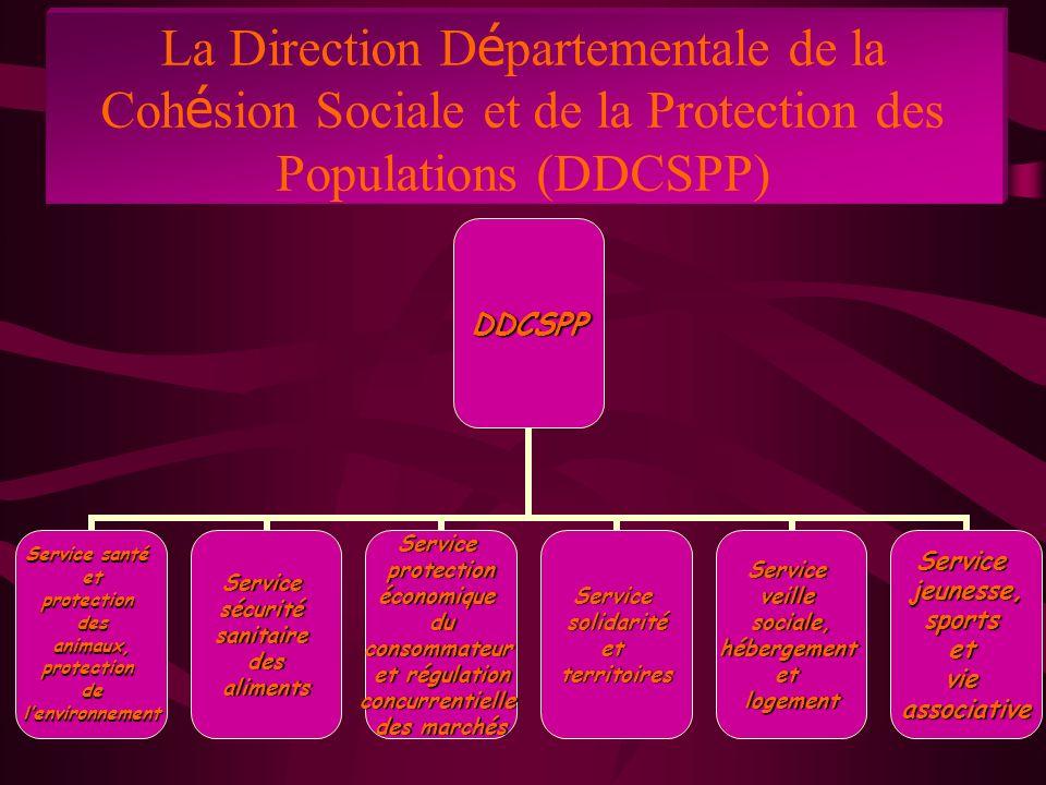 La Direction D é partementale de la Coh é sion Sociale et de la Protection des Populations (DDCSPP)DDCSPP Service santé etprotectiondesanimaux,protectiondelenvironnementServicesécuritésanitairedesalimentsServiceprotectionéconomiqueduconsommateur et régulation concurrentielle des marchés ServicesolidaritéetterritoiresServiceveillesociale,hébergementetlogementServicejeunesse,sportsetvieassociative