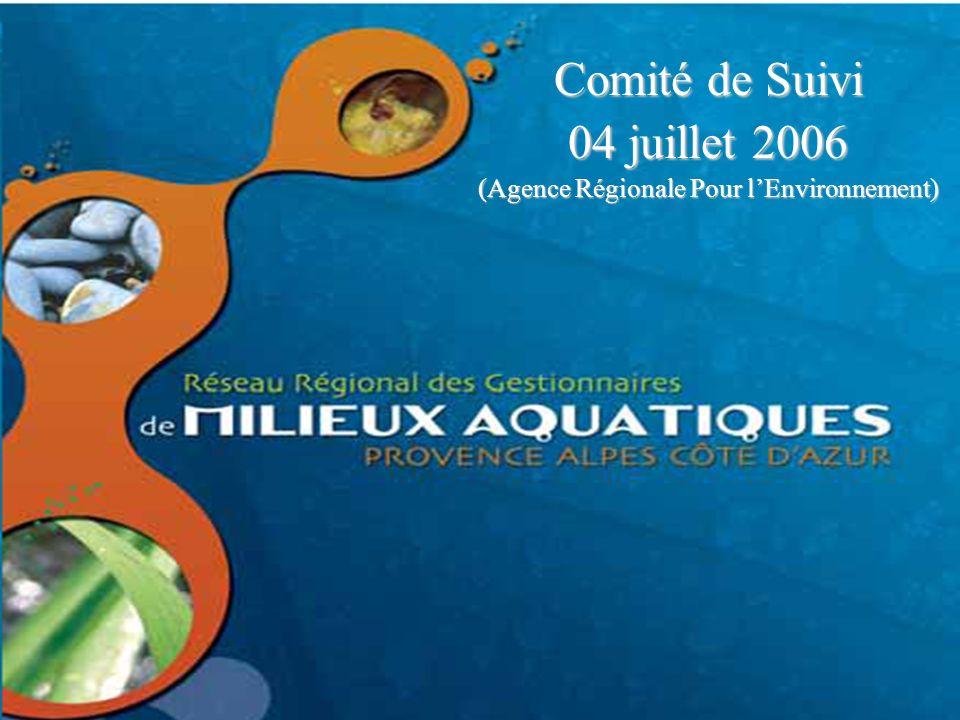 Comité de suivi – ARPE – 04 juillet 2006 Comité de Suivi 04 juillet 2006 (Agence Régionale Pour lEnvironnement)