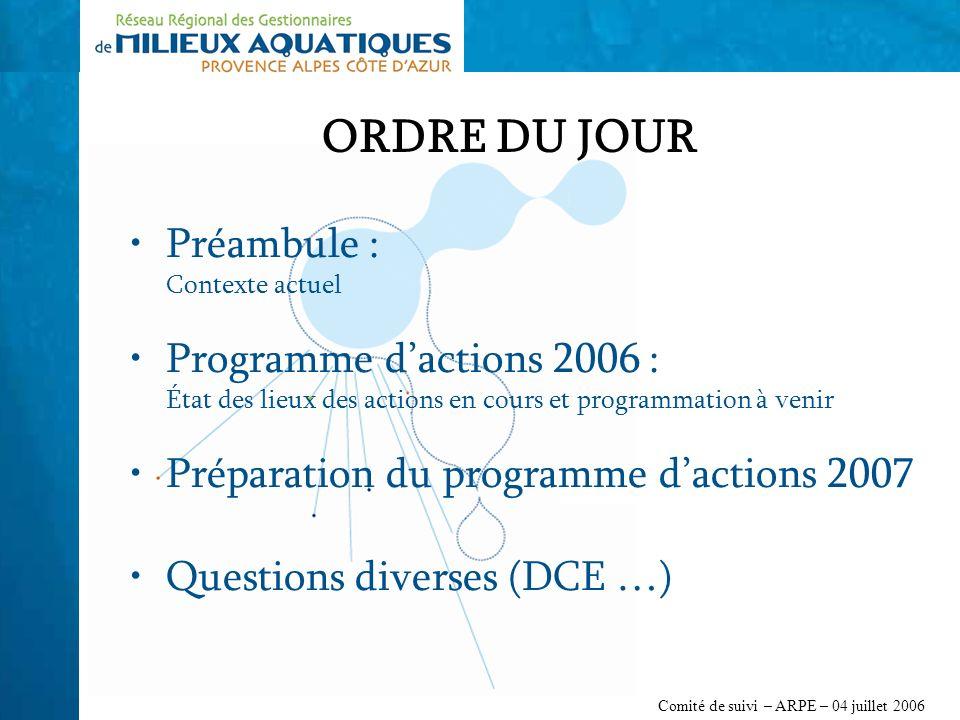 Comité de suivi – ARPE – 04 juillet 2006 ORDRE DU JOUR Préambule : Contexte actuel Programme dactions 2006 : État des lieux des actions en cours et programmation à venir Préparation du programme dactions 2007 Questions diverses (DCE …)