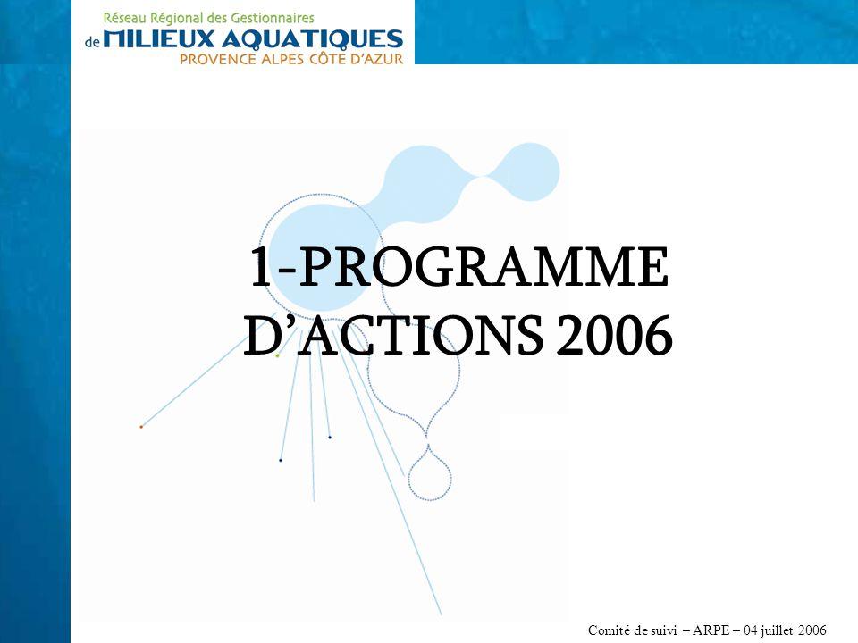 Comité de suivi – ARPE – 04 juillet 2006 1-PROGRAMME DACTIONS 2006