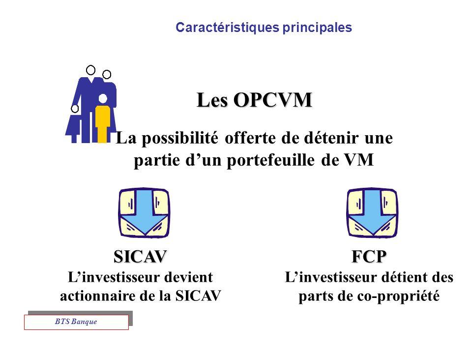 Caractéristiques principales Les OPCVM La possibilité offerte de détenir une partie dun portefeuille de VM SICAV Linvestisseur devient actionnaire de la SICAVFCP Linvestisseur détient des parts de co-propriété BTS Banque