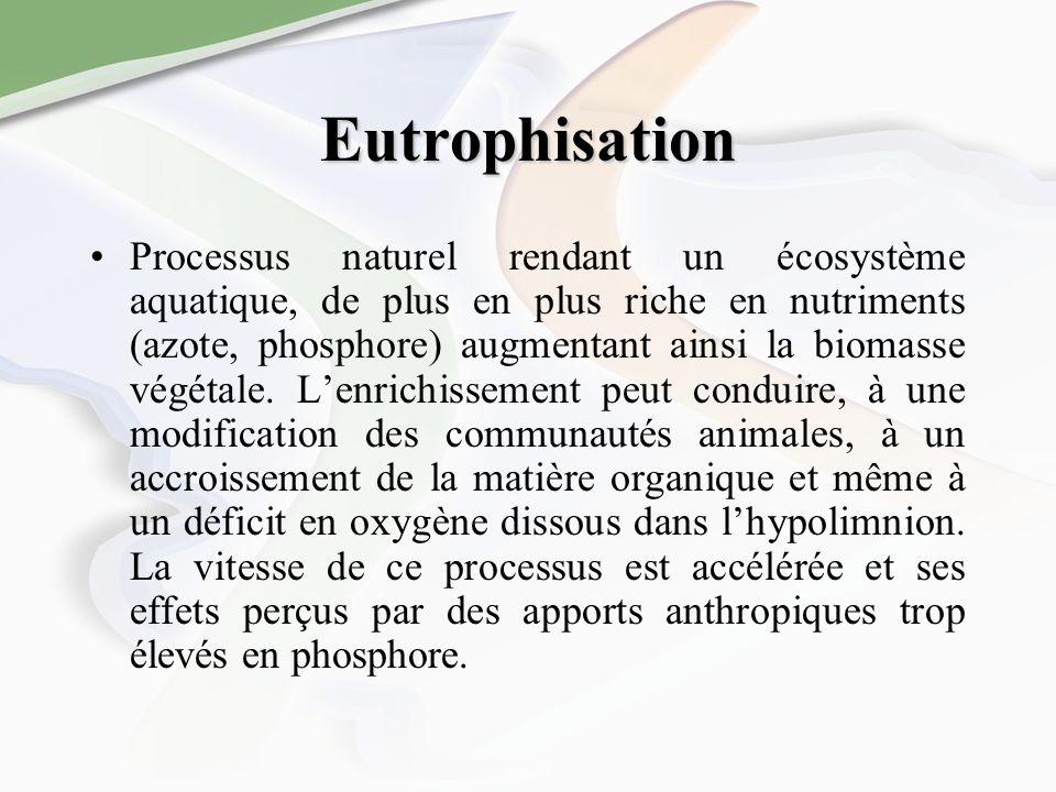 Eutrophisation Processus naturel rendant un écosystème aquatique, de plus en plus riche en nutriments (azote, phosphore) augmentant ainsi la biomasse végétale.