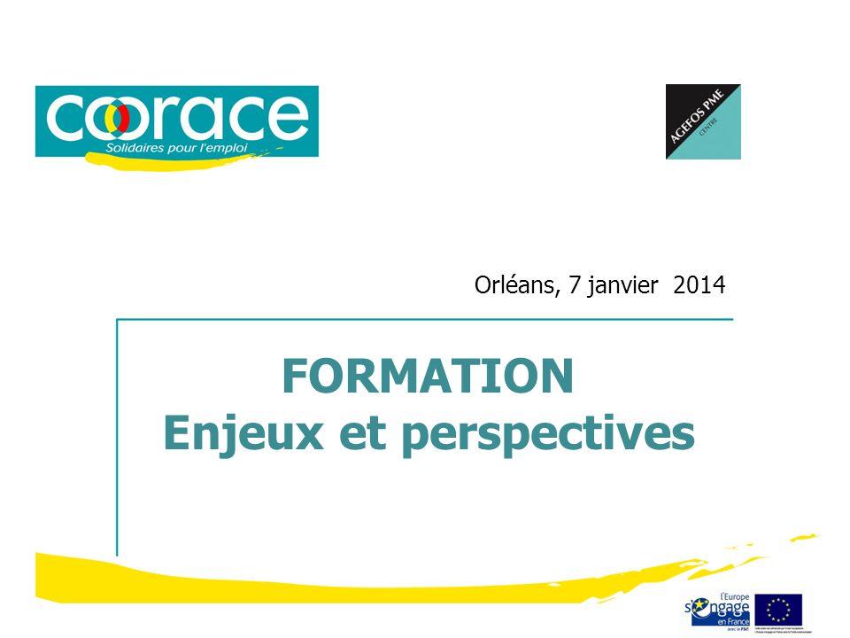 Orléans, 7 janvier 2014 FORMATION Enjeux et perspectives
